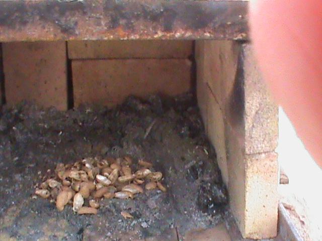 Brick Oven - Inside