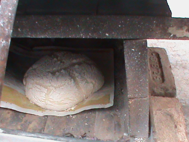 Sourdough bread 1
